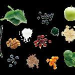 Les ingrédients d'Ambronite v5
