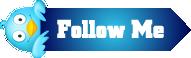 Bouton Follow me sur Twitter @NicolasRobaux